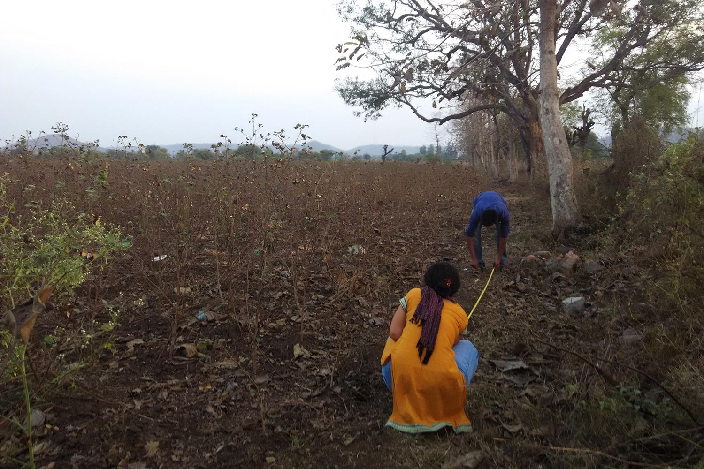 gramartproject_grow-in-india_pp (6)